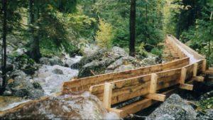 Holzschwemme