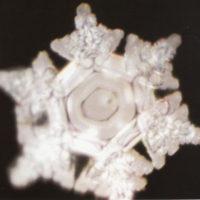 wasserkristall-antarktische-eis